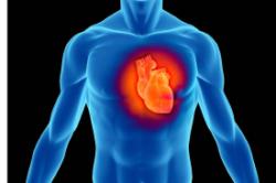 Giornata monotematica: Aneurisma dell'aorta addominale