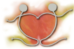 Focus on: Cardiologia interventistica oggi