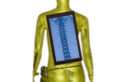 Corso teorico-pratico di diagnostica per immagini in Molise: Colonna vertebrale e midollo spinale