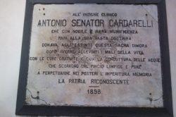 """Concorso """"Antonio Cardarelli"""" 2020: Premio per la migliore tesi di laurea – XII^ edizione"""
